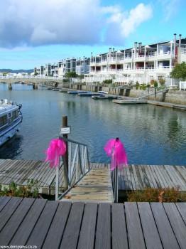 the knysna pink loerie festival