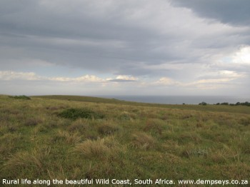 the space on headlands, wild coast, south africa...